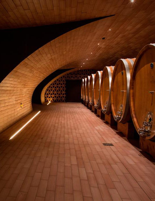 Wine tour in Italy